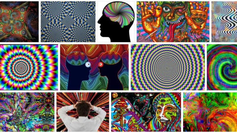 Meaning of Hallucination