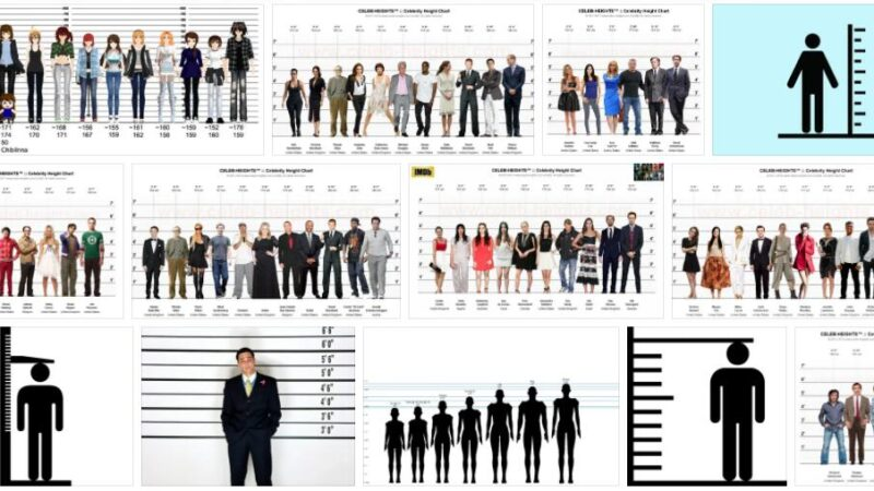 Meaning of Height