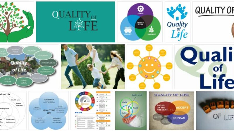 Meaning of Quality of Life