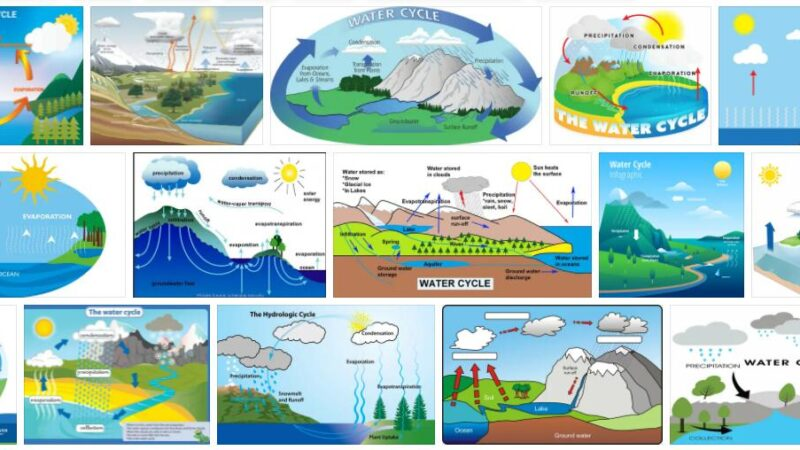 Meaning of Water Cycle